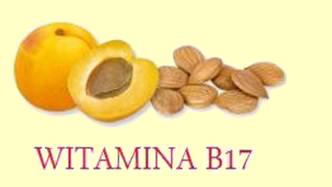 pestki z moreli - żródło witaminy B17